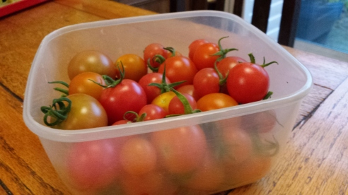 Container of cherry tomatoes
