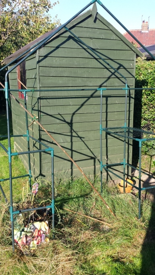 Greenhouse frame with shed behind