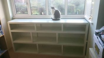 Grey and white cat looking out of a window and sitting on a shelving unit