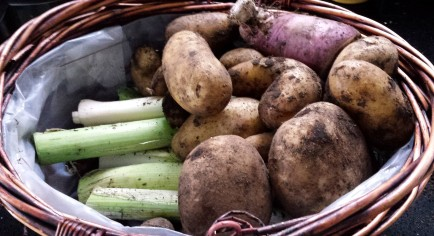 Newly pulled potatoes, leeks and radish in a wicker basket