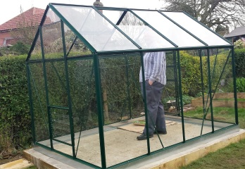 Man standing in greenhouse