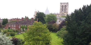 Summer gardens and trees with York Minster in the background