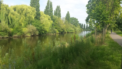 River with trees and lots of greenery on both banks