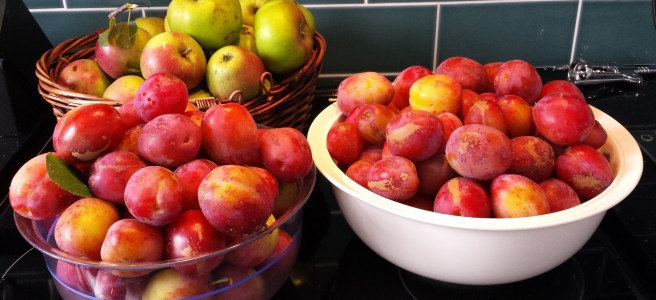 2 bowls of Victoria plums and a basket of apples