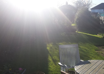 Garden with shafts of sunshine beaming down on to the green lawn