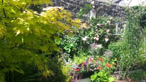 Walled border with climbing roses and other colourful flowering plants