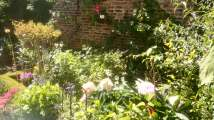 Garden border backed by old red brick wall