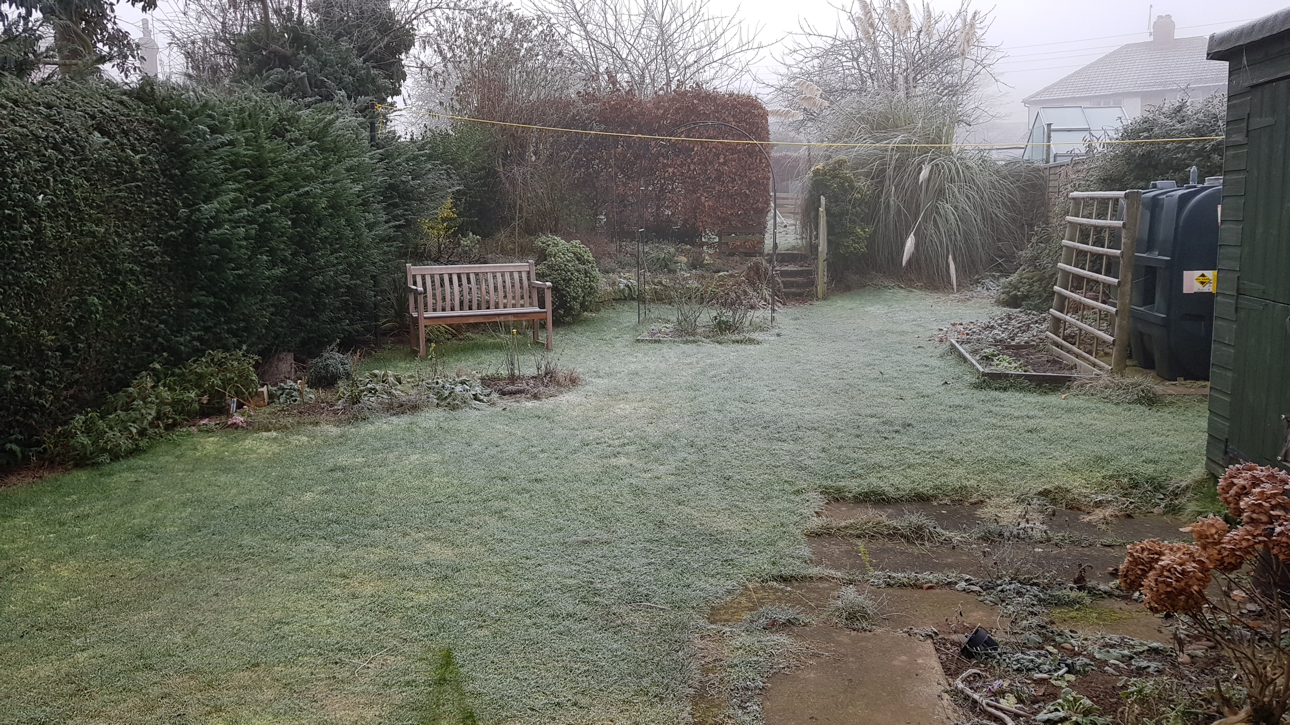 A winter garden covered in frost