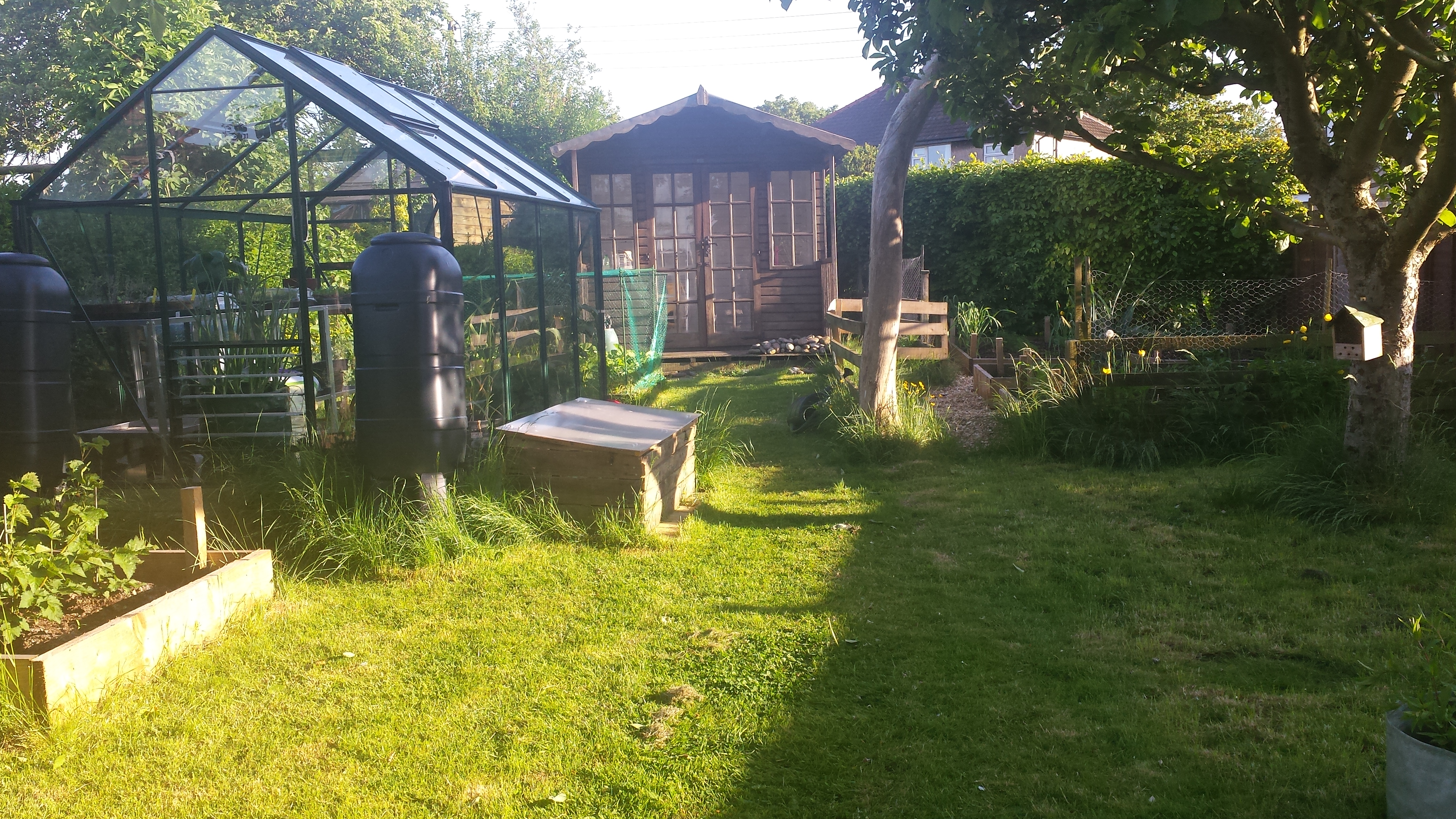 Sunny garden with a greenhouse, cold frame, summer house and apple tree