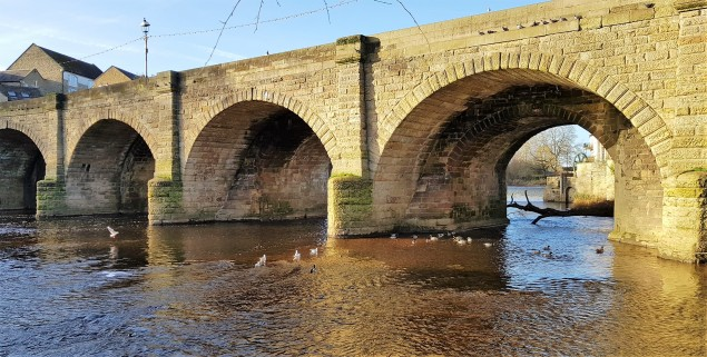 Stone bridge over a river with birds on the water on a sunny day