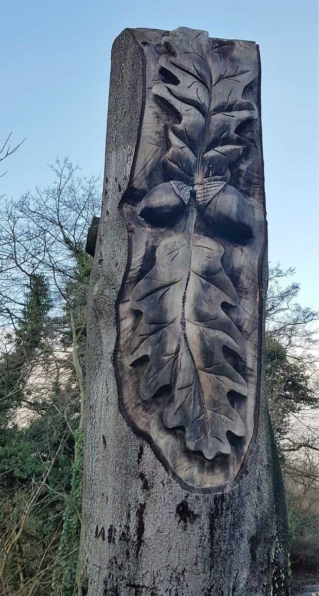 Oak leaves carved into a tree trunk