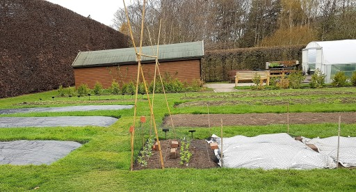 Rectangular planting beds, some covered with plastic