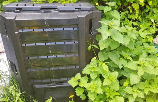 Black plastic compost bin next to a large patch of nettles