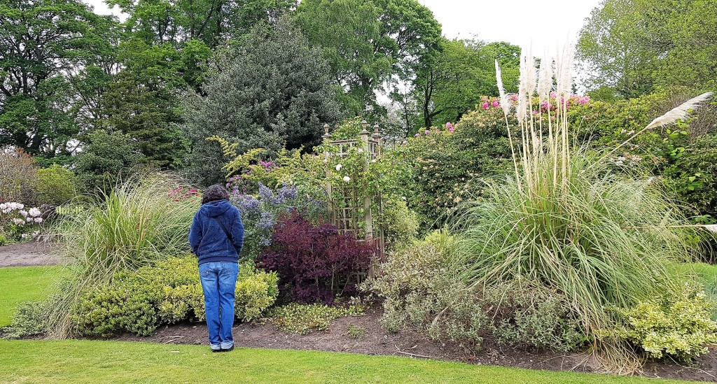 Woman in jeans facing away from camera and looking at garden bed containing shrubs and grasses