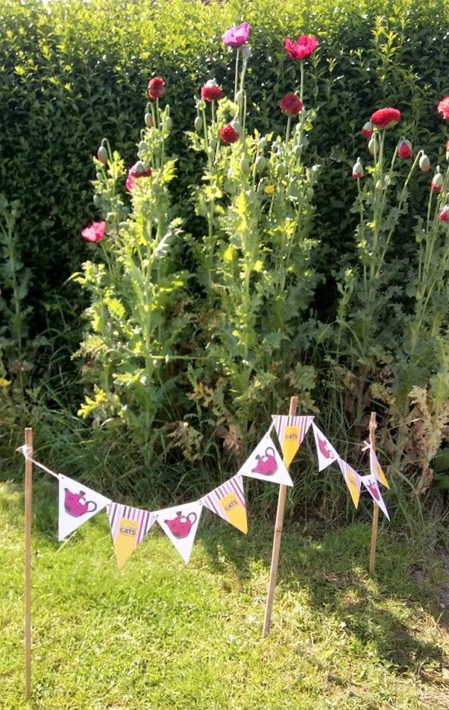 Tall poppies behind some bunting